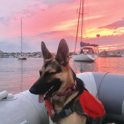 Sophie and Artemis in Rockland Harbor at Sunset